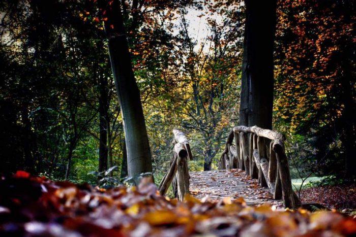 brug over, een stap maken in je leven? doe dan de herfstchallenge bij Louter Annet coaching slochteren midden Groningen